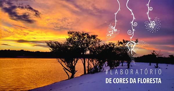 Laboratório de Cores da Floresta - 2020