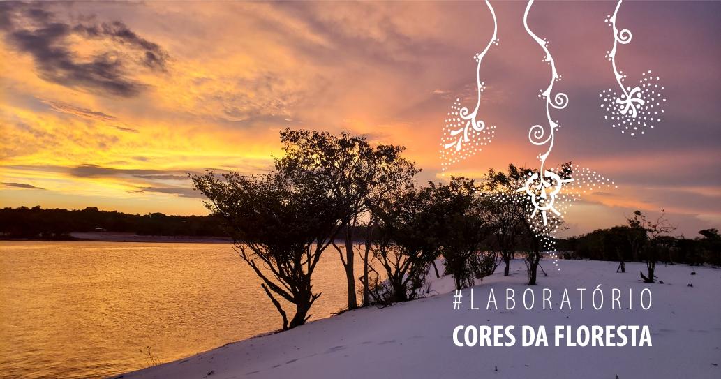 Laboratório Cores da Floresta - 2020